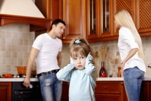 the divorce lawyer chicago